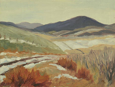 Cottonwood Pass November by Julia Grundmeier