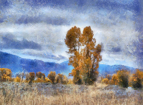 Cottonwoods by Dan D'Amico