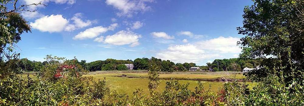 Cotuit Salt Marsh in Cape Cod by Capone A