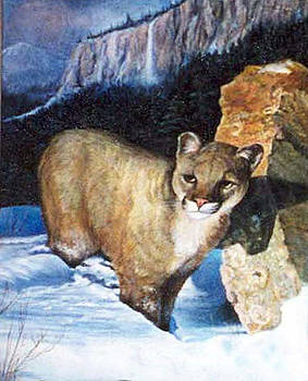 Cougar in snow by Donna Tucker