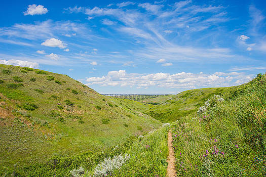 Coulees of Lethbridge by Dwayne Schnell