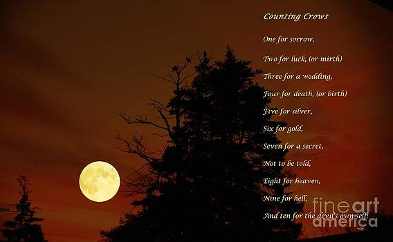 Barbara Griffin - Counting Crows - Old Superstitious Nursery Rhyme