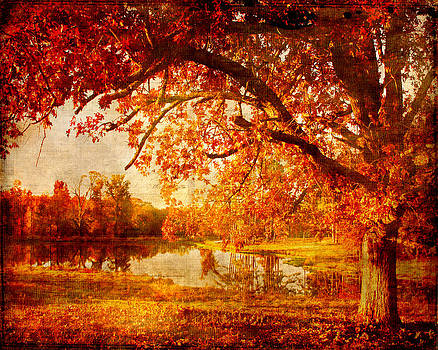 Country Autumn by Pam Carter