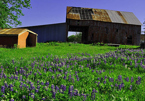 Country Barn by Timothy Johnson