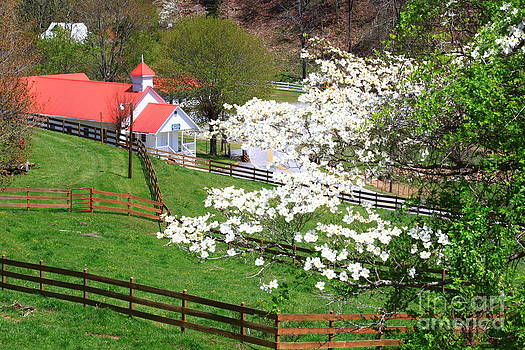 Jill Lang - Country Church in the Springtime