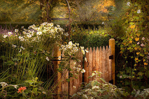 Mike Savad - Country - Country autumn garden