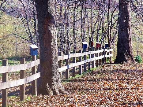 Country Fence by Dave Dresser