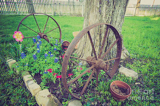 Country Garden by Will Cardoso
