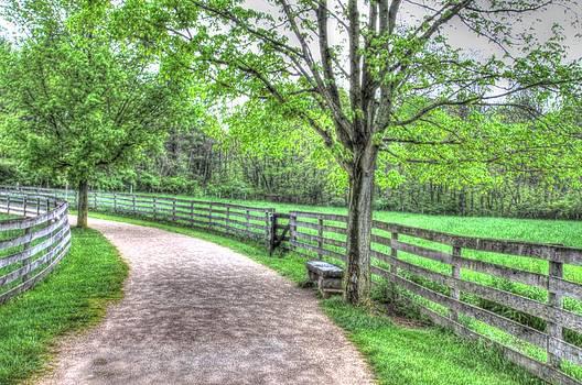 Country Lane at Slate Run by Elaine Farrington Johnson