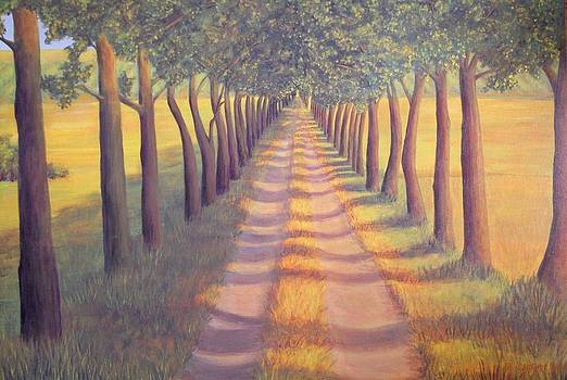 Country Lane by Sophia Schmierer