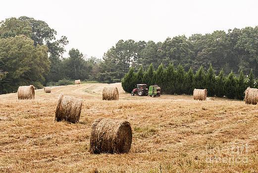 Country Living by Jinx Farmer