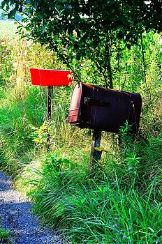 Country Mail by Christine May
