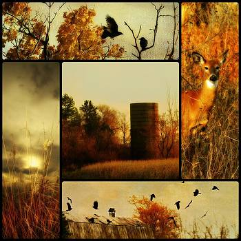 Gothicrow Images - Country Nature