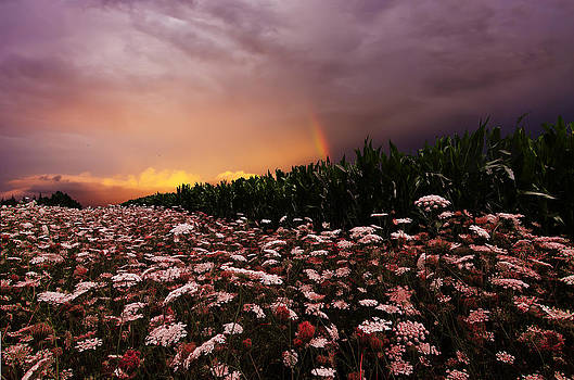 Country Rainbow by Dustin Miller