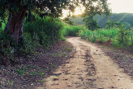 Country Road in Rio das Flores - Brazil by Igor Alecsander