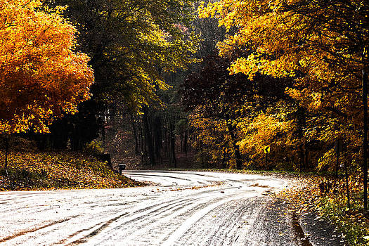 Country Road by Amy Lingle