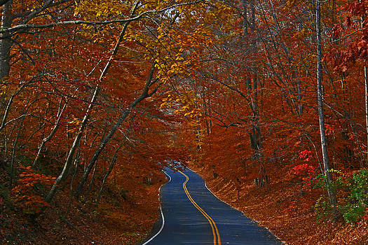 Country Road by Andy Lawless