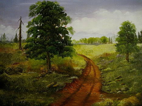 Country Road by Martha Efurd