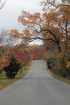 Country road of fall by Renee Braun