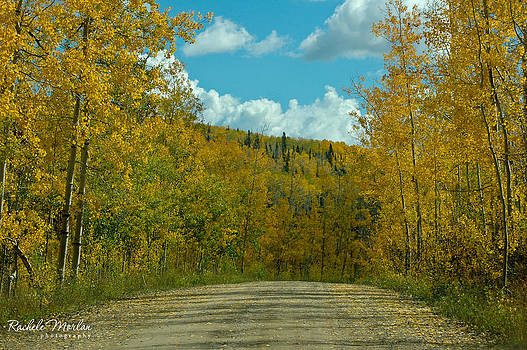 Country Road by Rachele Morlan