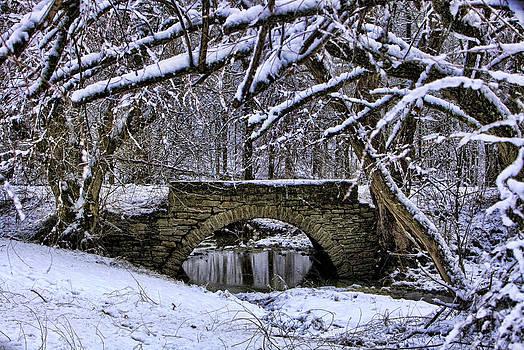 Country Road Stone Bridge by Gene Linzy