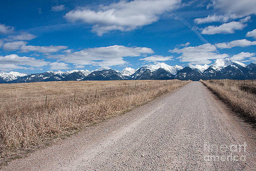 Country Road Take Me Home by Katie LaSalle-Lowery