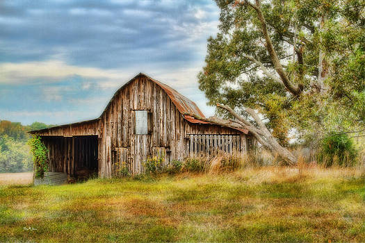 Farm - Barn - Country Time Barn by Barry Jones