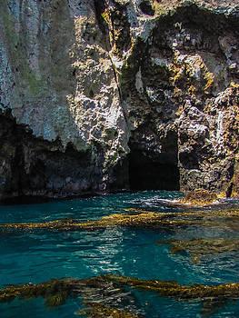 Cove In The Ocean by Lesley Brindley