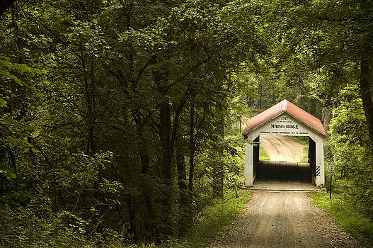 Covered Bridge in the Woods by Nancy Myer
