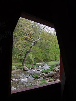 Angela Hansen - Covered Bridge View of Stream