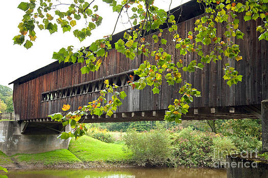 Covered Bridge with Leafy Lace by Carol Barrington