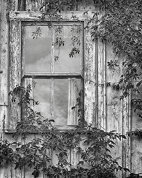 Nikolyn McDonald - Covered in Vines - Window in Old House - Black and White