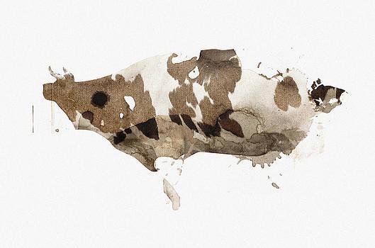 Cow fur by Vladas Orzekauskas