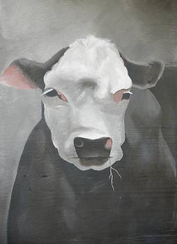 Cow on Milkhouse by Jen Santa