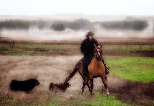 Kathy McCabe - Cowboy II