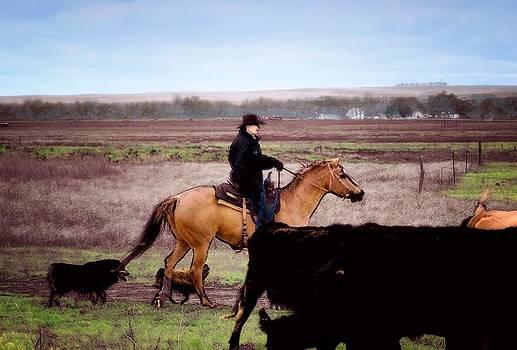 Kathy McCabe - Cowboy
