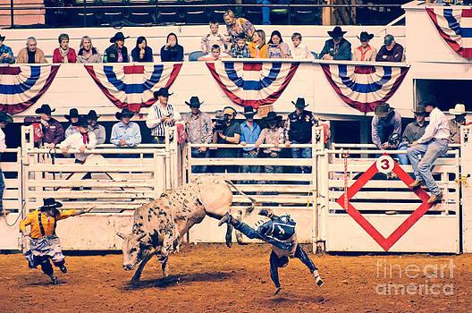 Cowboy Up by Charles Dobbs