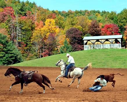 Cowboys by Bob Jackson