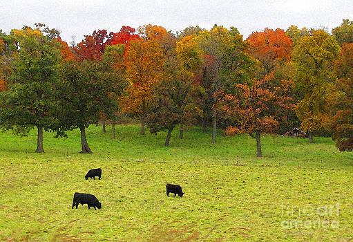 Minding My  Visions by Adri and Ray - Cows Grazing Among Autumn Beauty