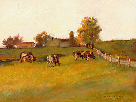 Cows2 by J Reifsnyder