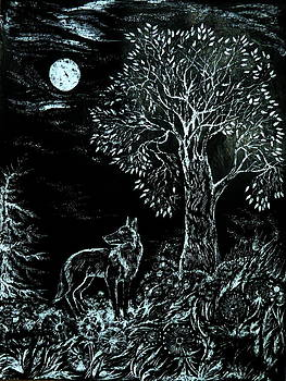 Anna  Duyunova - Coyote Night