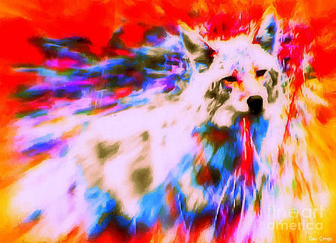 Coyote Wild by Dani Stites
