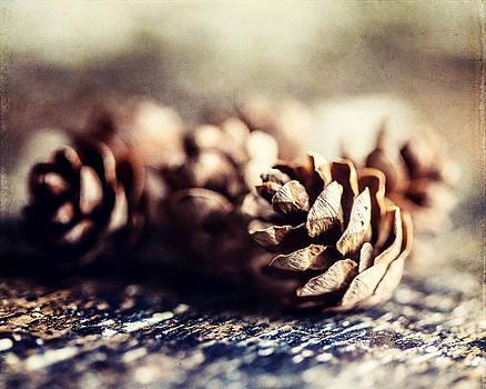 Lisa Russo - Cozy Kitchen Decor Photograph of Hemlock Pinecones