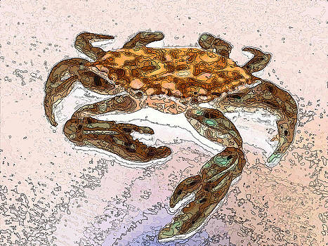 Crab on Beach Watercolor and Ink by