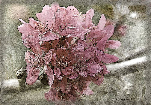 Crabapple by Penny Roberts