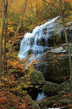Crabtree Falls VA by Robert Pennix