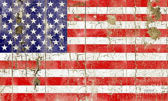 Cracked Stars and Stripes by Sharon Marcella Marston