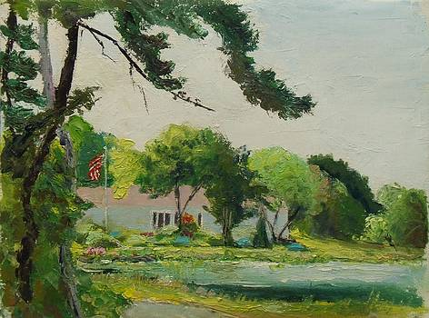 Cranberry Bog July 4 by Nicolas Bouteneff