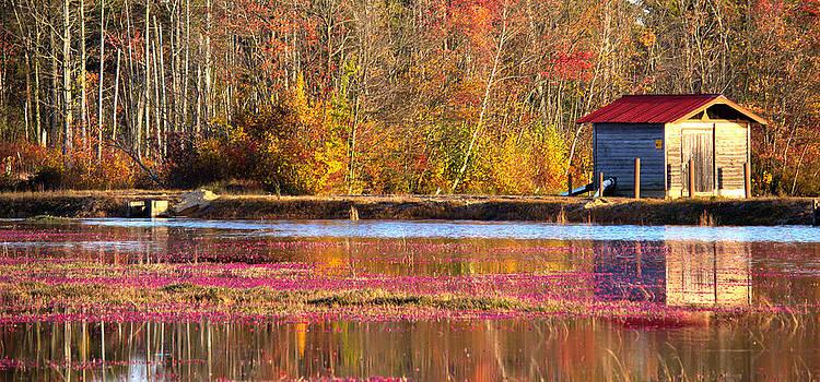 Tina McGinley - Cranberry bog pumphouse