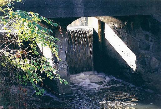 Cranbrook Waterfall by Cynthia Hilliard